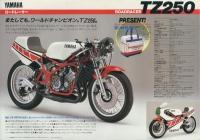 84TZ.jpg
