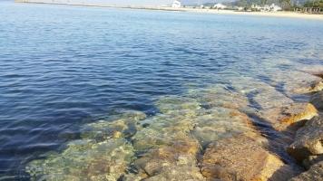 【 多賀の浜 Taga beach 】②