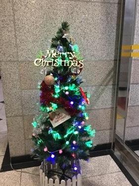 クリスマスツリー。我が社の事務所のビルでも発見w