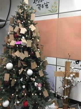 クリスマスツリーの本来の姿は・・