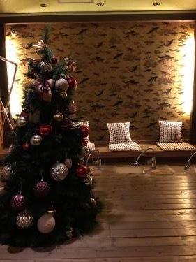 1月も堂々たる存在、クリスマスツリーw