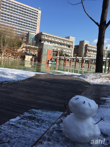 2017年、初雪だるま。