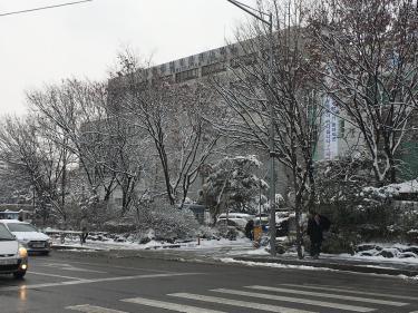 今年の更新は雪の中いってきました。