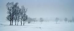 吹雪の前兆