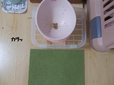 PC240088.jpg