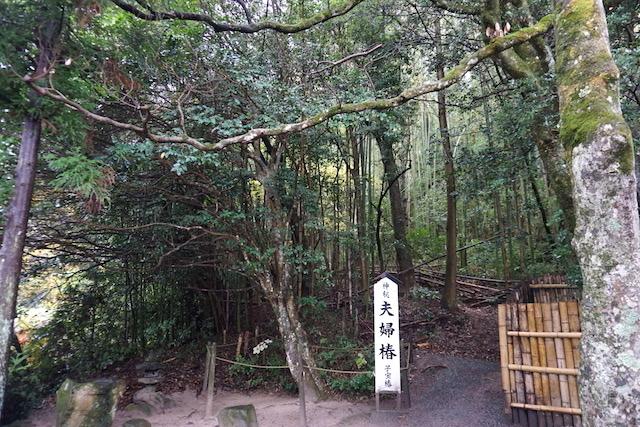 1119八重垣神社9