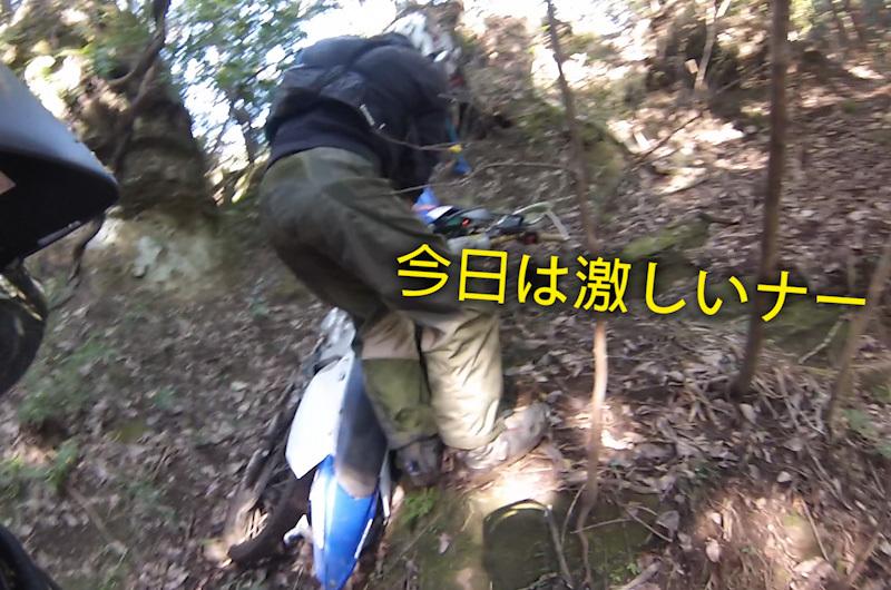 房総ケモ探検隊
