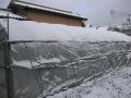 H29.1.15積雪2㎝@IMG_0391
