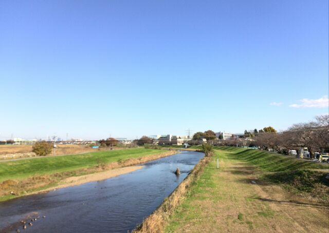 秋の柳瀬川