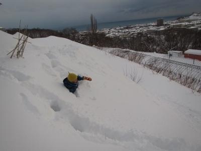雪にうまる