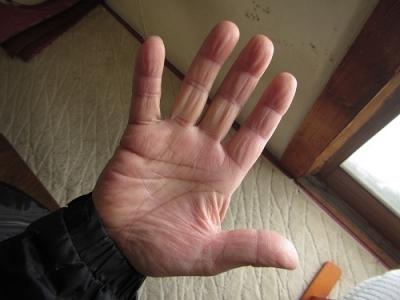 漁師さんの手