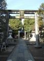 橘樹神社鳥居