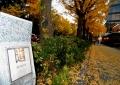 「日本の道百選」の道標