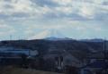 新富士見橋より見る富士②