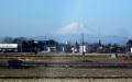 水上公園通りの富士