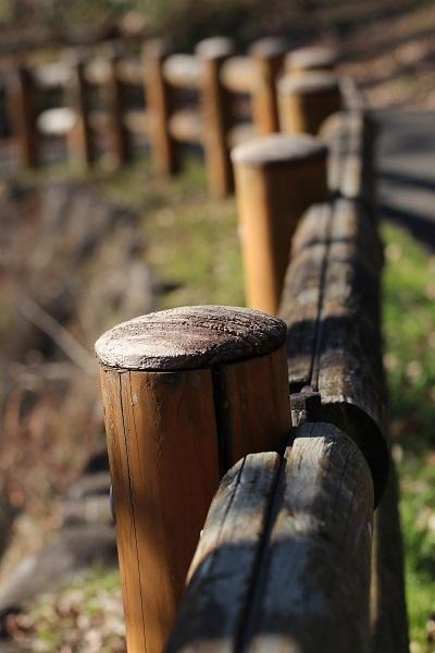 桜ヶ丘公園 (3)b