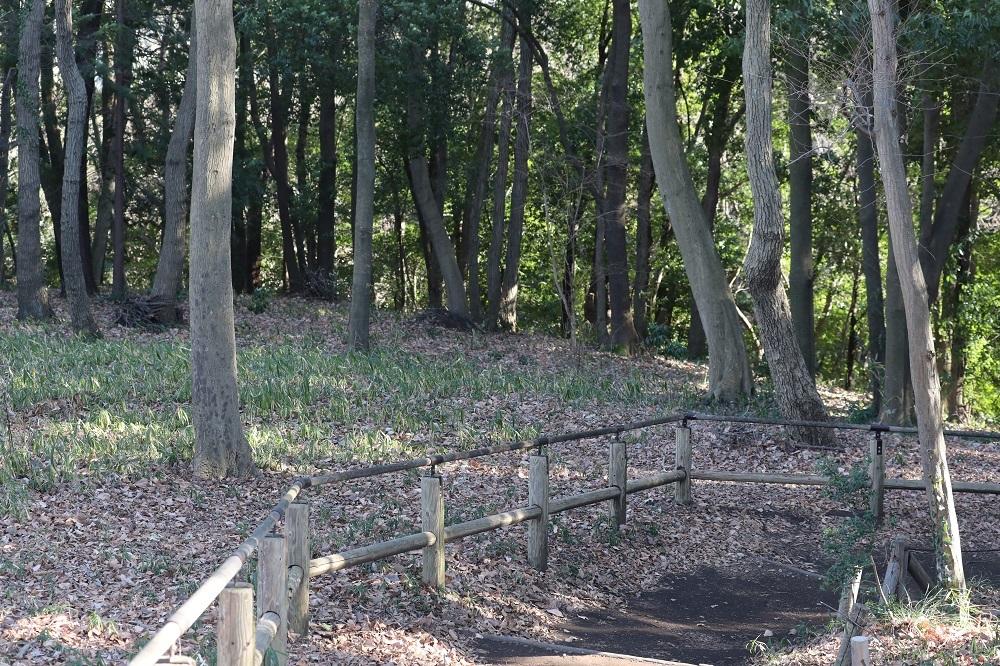 忠生公園 (3)b