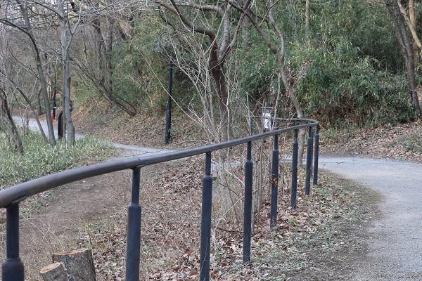長池公園 (1)b