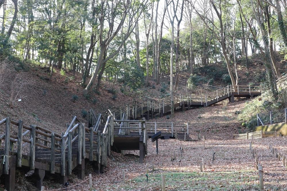 東高根森林公園 (1)b