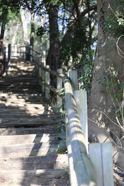 東高根森林公園 (2)b