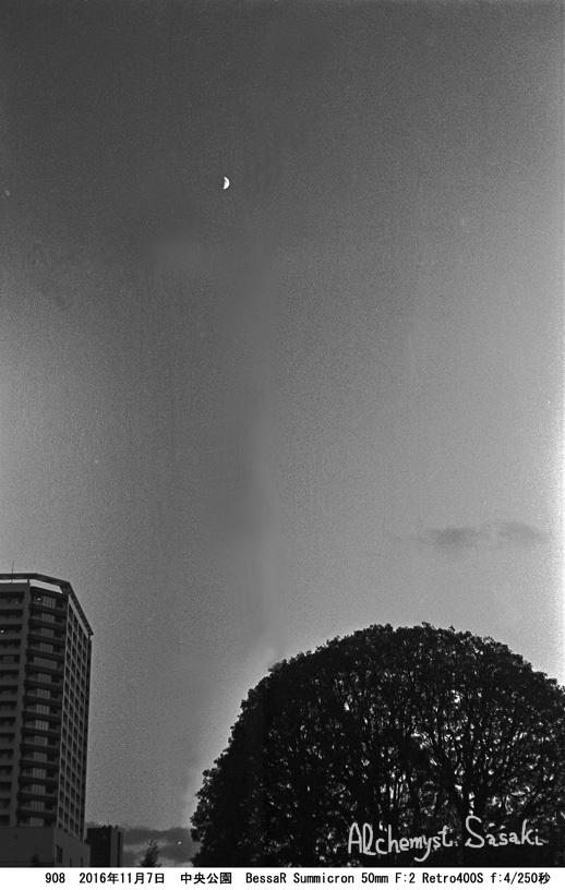 夕刻の中央公園908-48