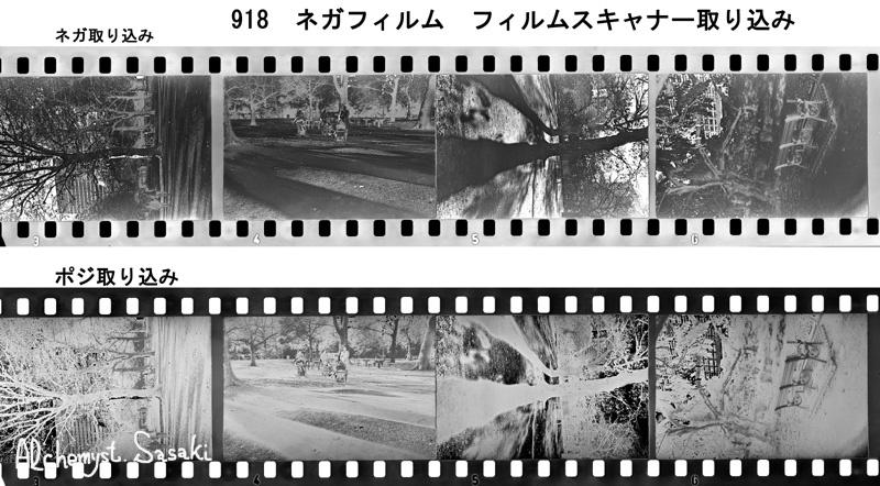 917 ネガ/Posi取り込み
