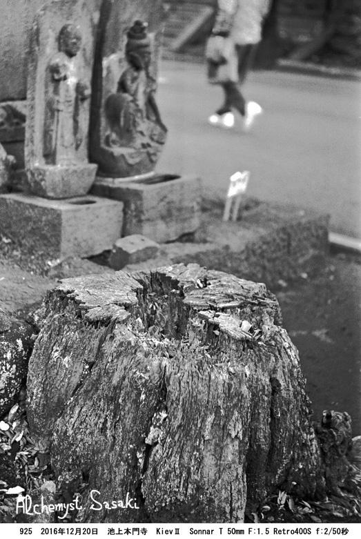 池上本門寺へ925-42