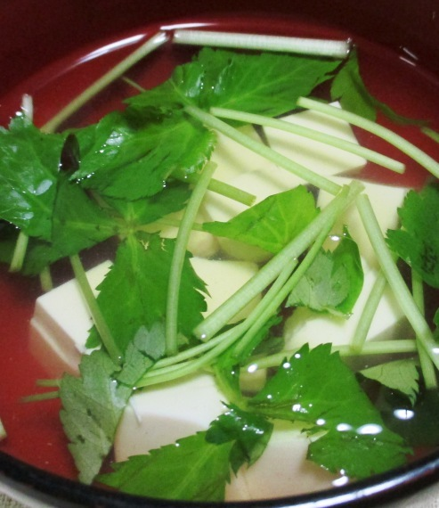 豆腐と三つ葉のすまし汁 B