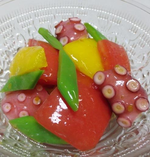 タコトマト B