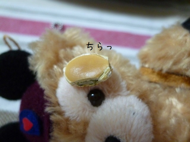 006-P1300464.jpg