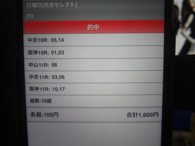 DSC03147.jpg