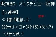 hy1210_1.jpg
