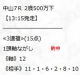 sy1210.jpg