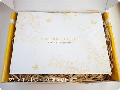 キャメロン&ガブリエル共通の説明書