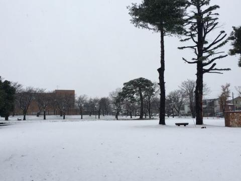 2016-12-11 初積雪S