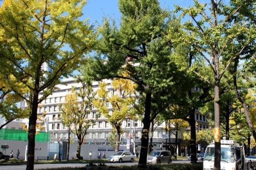0192:大阪ガスビル 御堂筋南側より