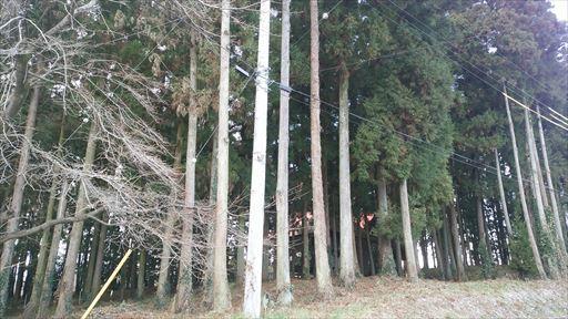 s秋間神社4