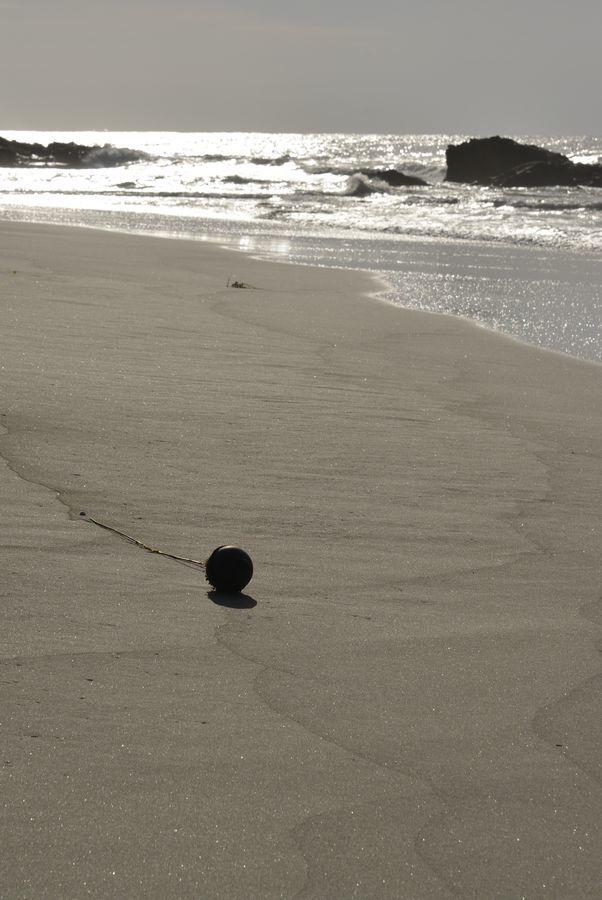 浜辺の光-1