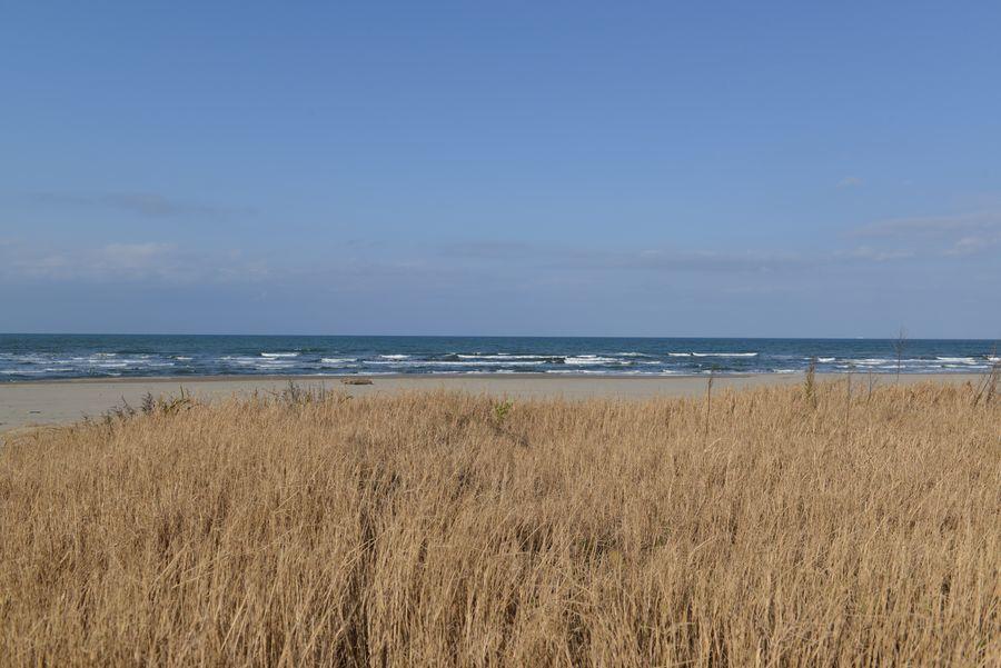 砂浜 冬の前-1