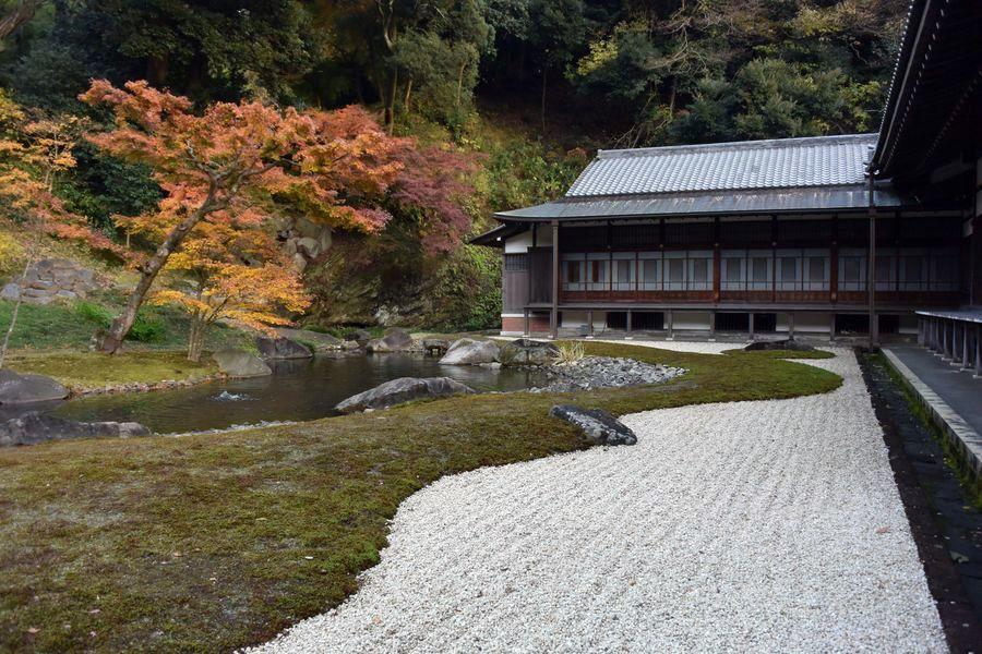 円覚寺 紅葉-2