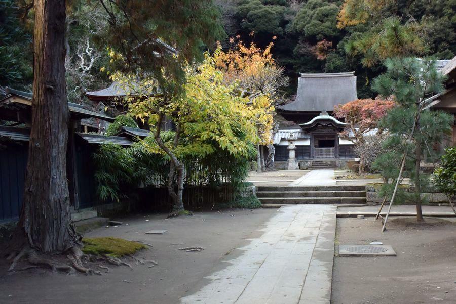 円覚寺 紅葉-3