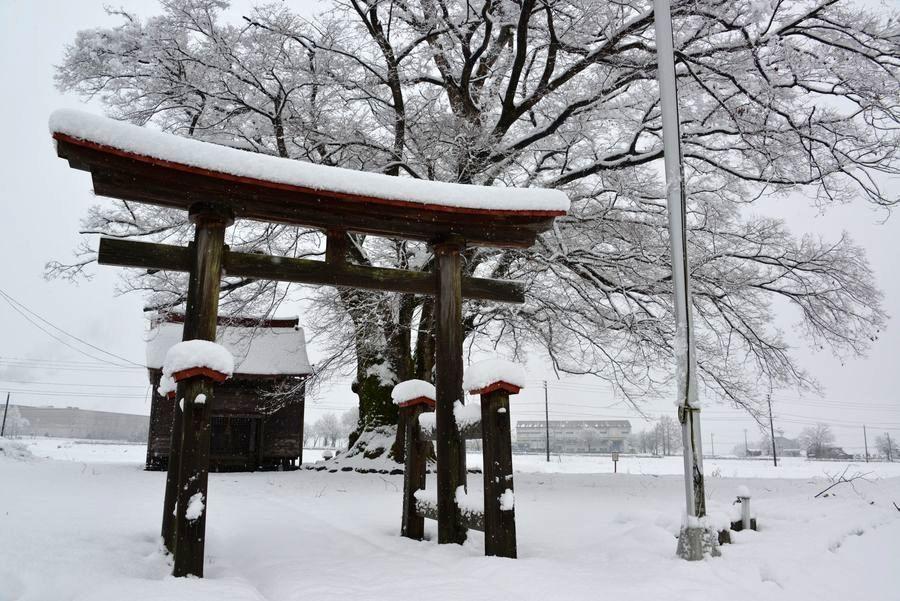 初雪 2つの神社-1