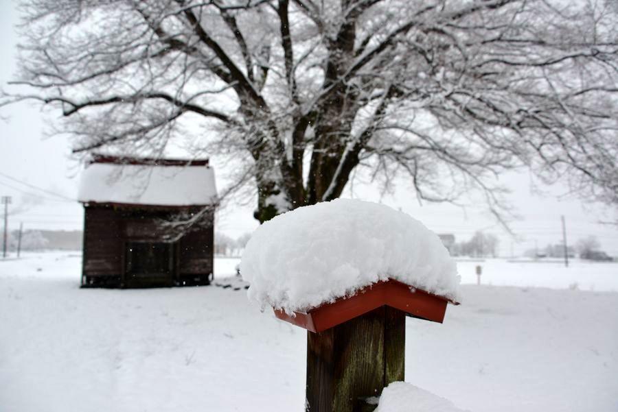 初雪 2つの神社-3
