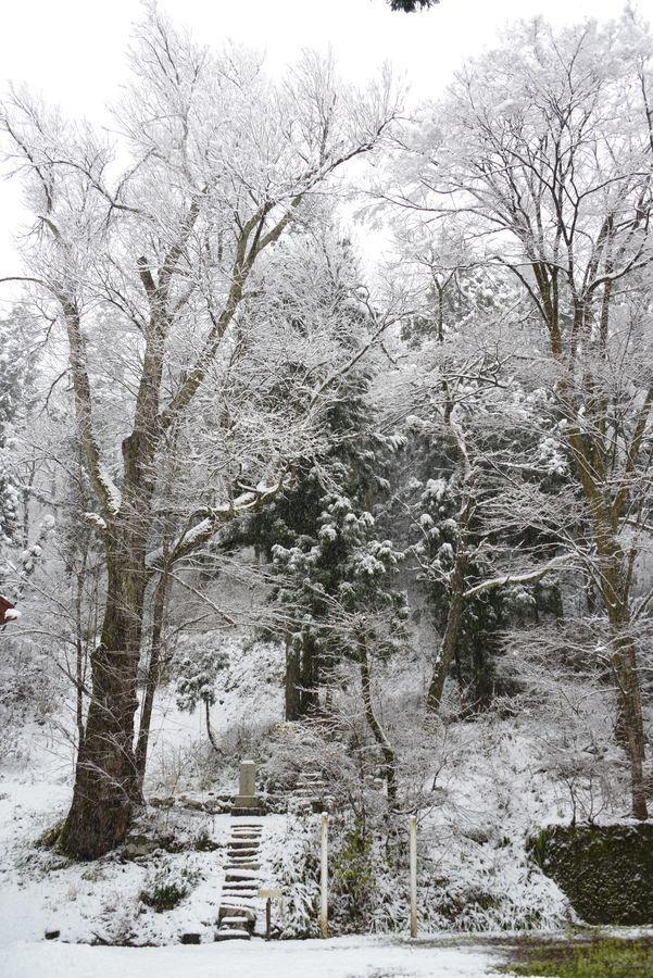 初雪 2つの神社-6
