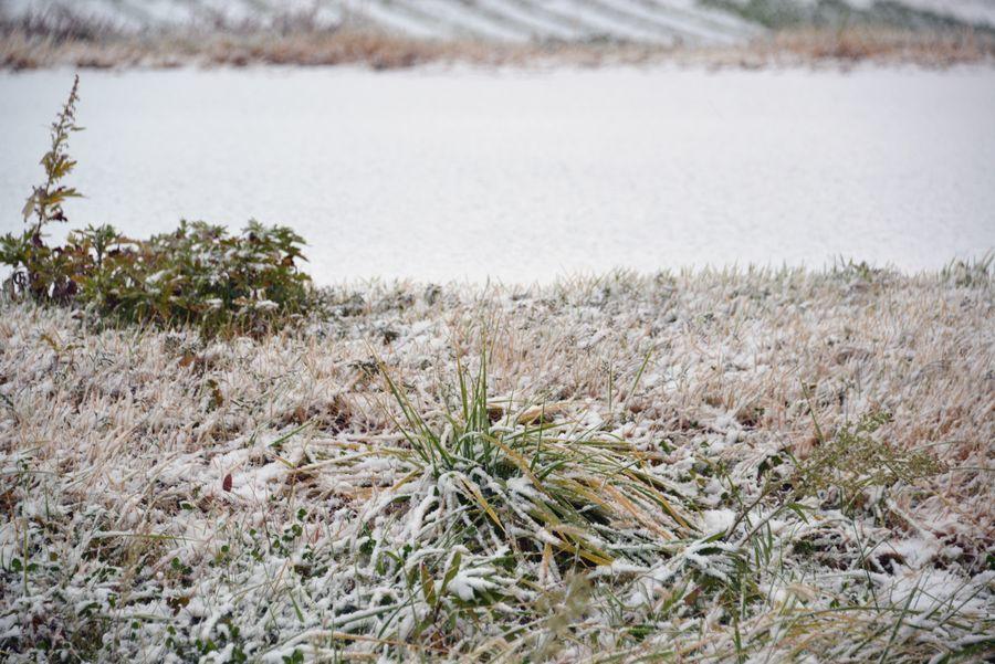 雪は降る-5