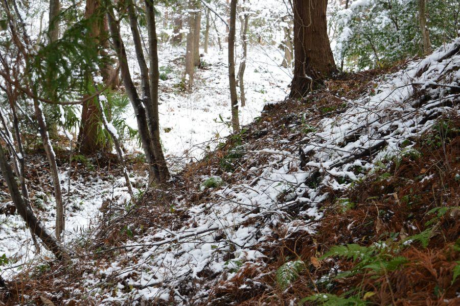 雪の城山公園-2