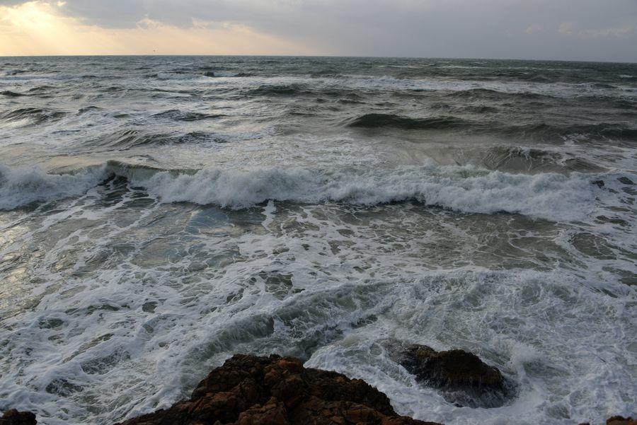 冬の日本海 波-1