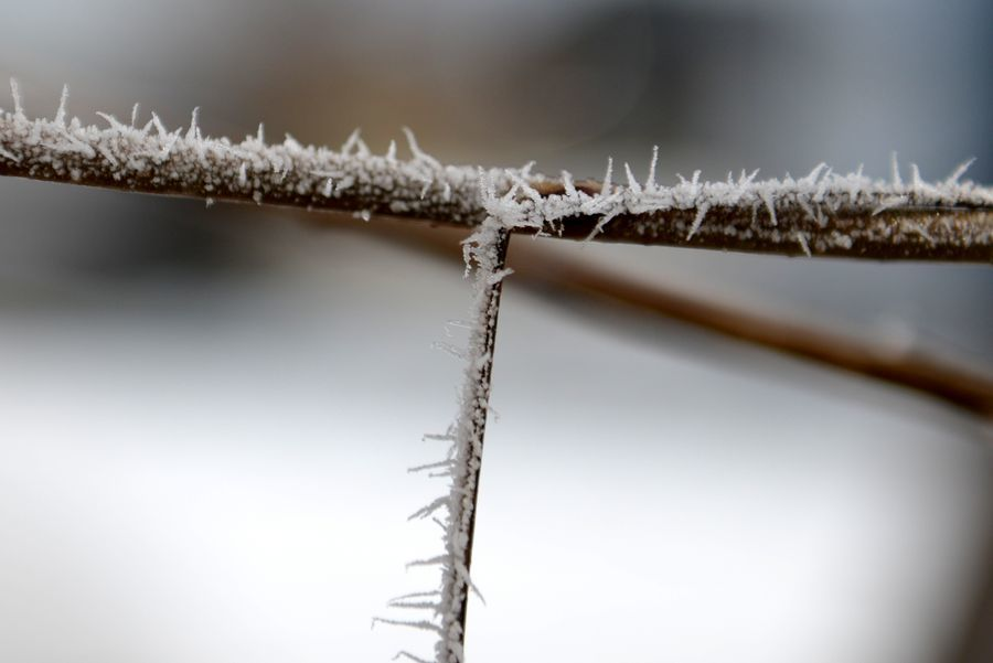 小さな冬-3