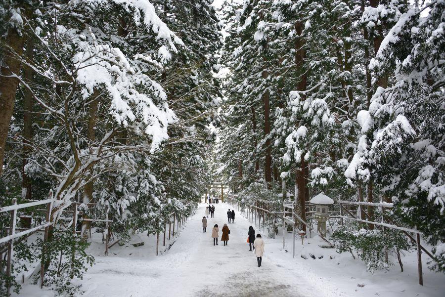 雪の神社-1