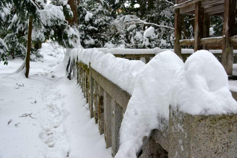 雪の神社-3